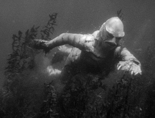 Encountering_Creature_Black_Lagoon