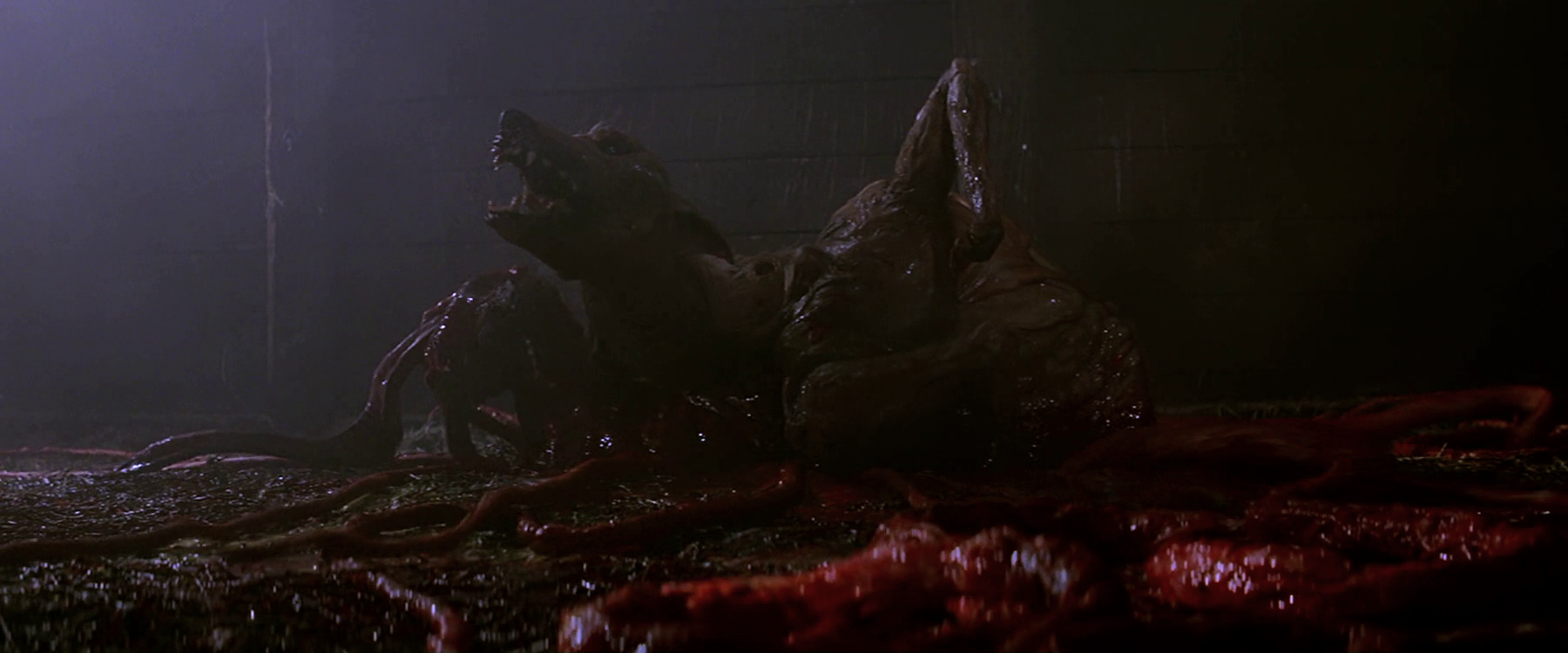 The_Kennel-Thing_puts_out_tentacles_-_The_Thing_(1982)