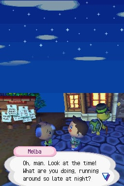 256full-animal-crossing_-wild-world-screenshot